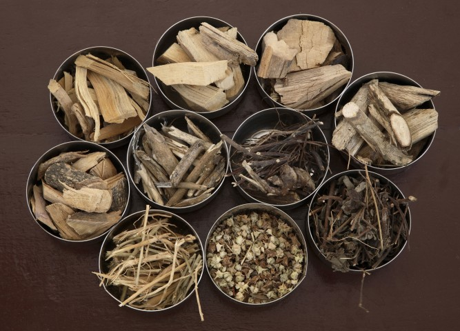 Various Ayurvedic Ingredients