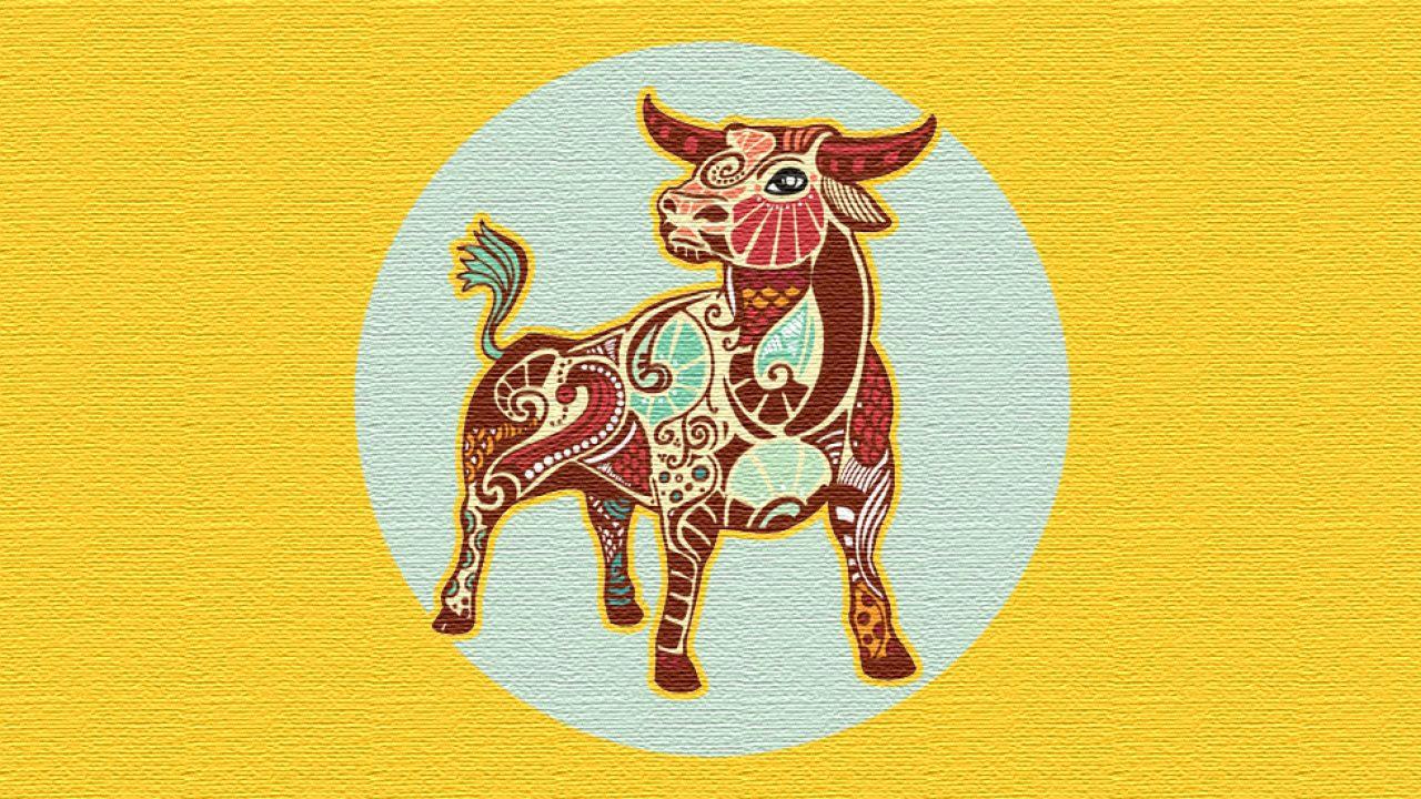 Cum să faci un taur, Ce tip de personalitate au cei născuți în zodia Taur?