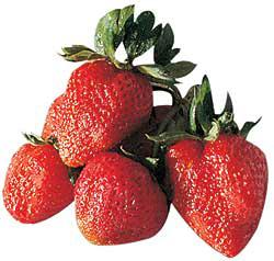 Capsuni, fructe