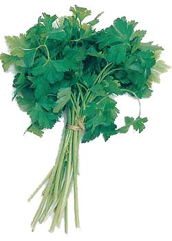 Patrunjel, legume