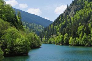 lac petrimanu
