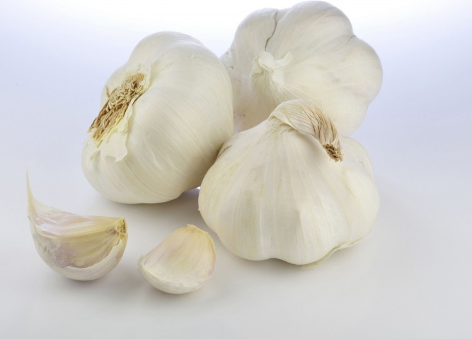 Garlic with Cloves of Garlic