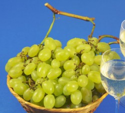 glasses of white wine and grapes
