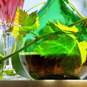 Vinoterapie, vin