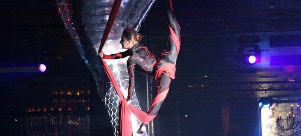 Compania de teatru - dans 2012