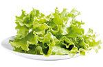 1 castronel de frunze de salata