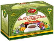 Ceaiul Scade febra