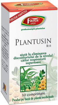 Comprimatele Plantusin