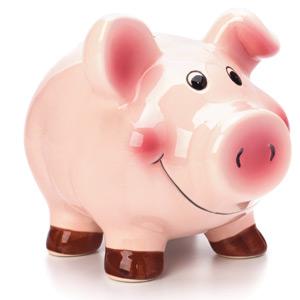 bani, economie, economisire
