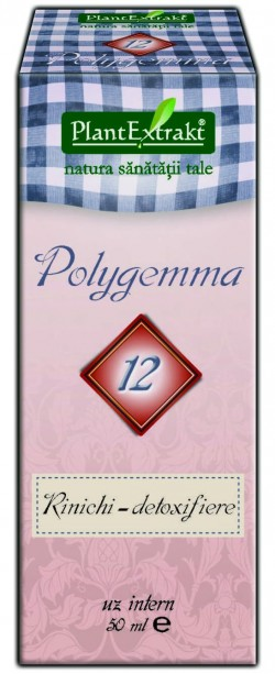POLYGEMMA Nr 12