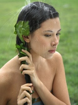 Hair Treatment with Hibiscus Leaves
