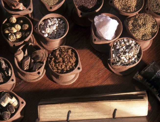 Ayurvedic Ingredients - Herbs & Plants with manuscript