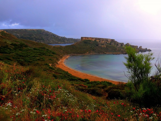 avantaje.Malta.15.05.2014