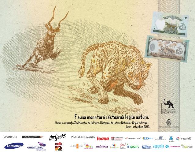 antilopa---leopard_colorat
