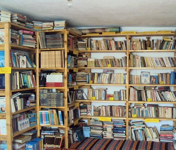 Biblioteca din casa Doinei