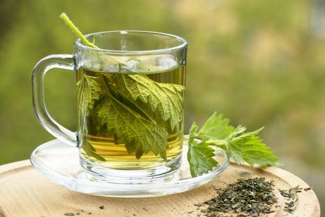 urzici-ceai