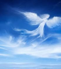 Test Care este ghidul tau spiritual