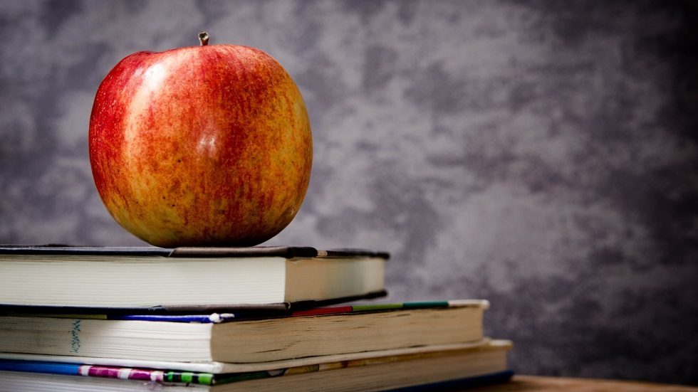 Educatie alternativa