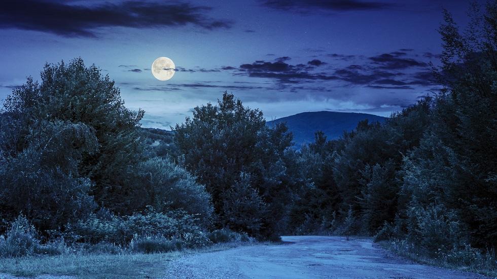 luna plina deasupra padurii