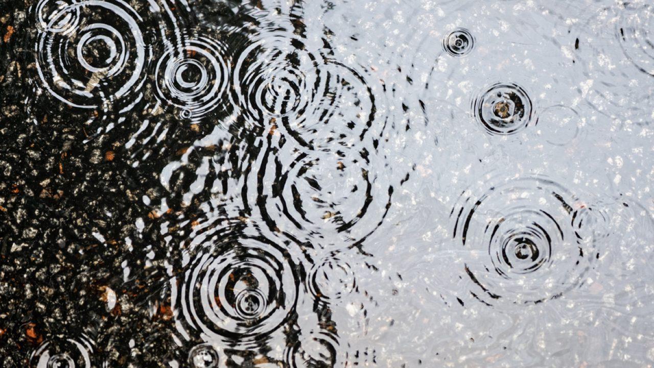pierderea în greutate de ploaie