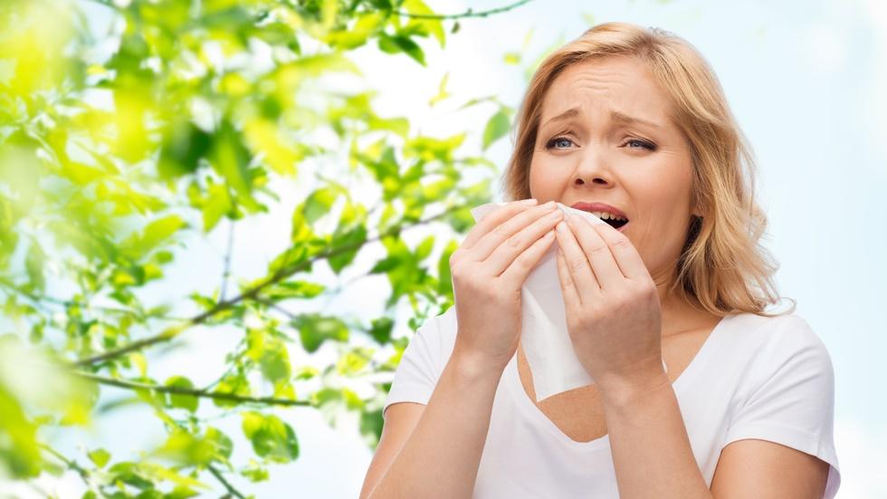 Ce este febra fânului și cum poate fi ea tratată