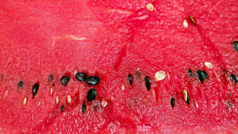 Ce se întâmplă dacă fierbi semințele de pepene roșu?