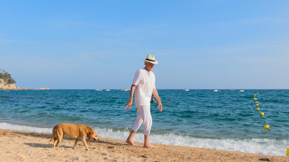 Câinii, recomandarea medicilor pentru persoanele în vârstă