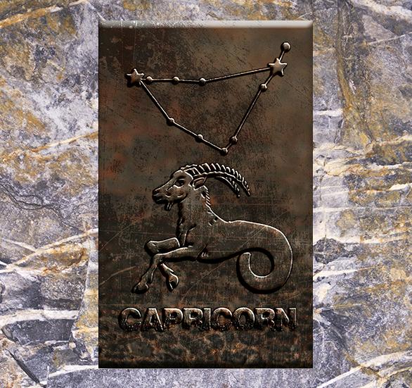Horoscopul lunar august 2017 pentru Capricorn