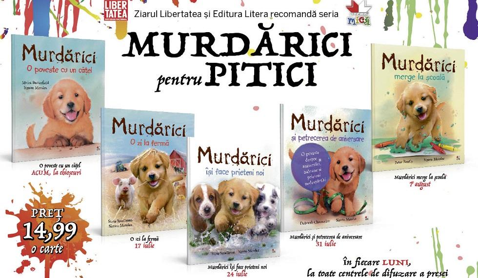 Colectia Murdarici