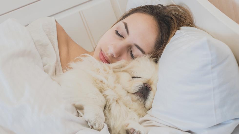 De ce e indicat să dormi alături de câinele tău