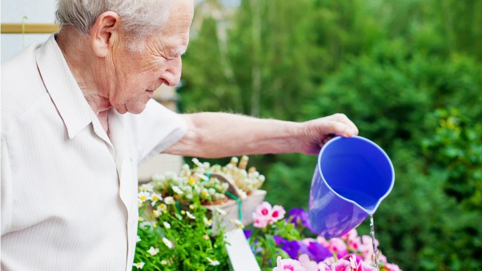 ultima dorință a soției a fost să ude florile