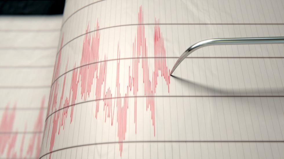 Cutremur cu magnitudinea 3,9 grade pe scara Richter