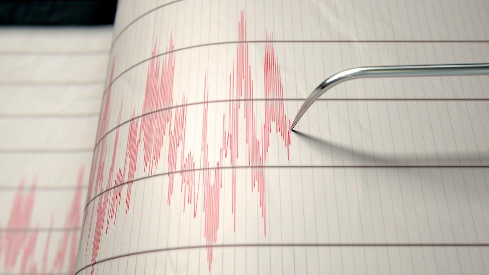 Cutremur cu magnitundinea de 3,5 grade pe scara Richter