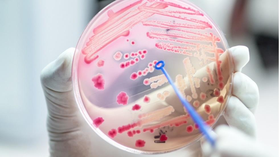 substanța care poate crește rezistența la antibiotice