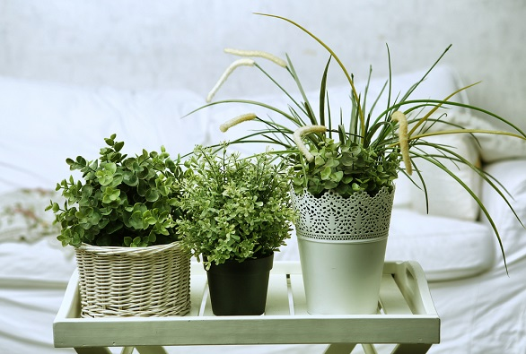 soluții practice ca să creezi o atmosferă primitoare la tine acasă