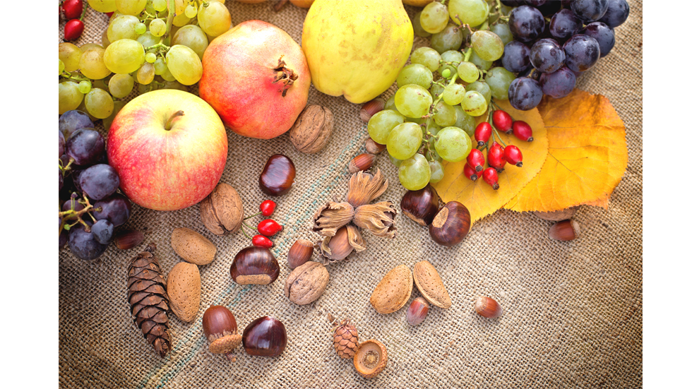fructe-toamna