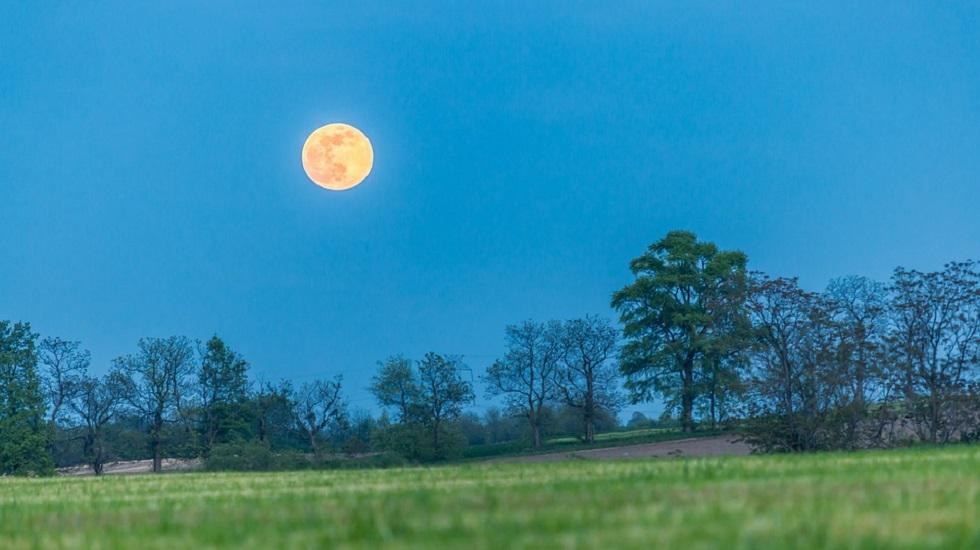 Luna Plină în Taur din 24 octombrie