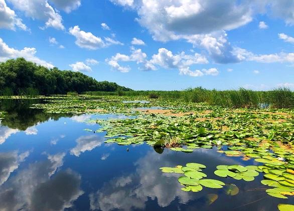 50% reducere la vacanțele în Delta Dunării, de Black Friday!