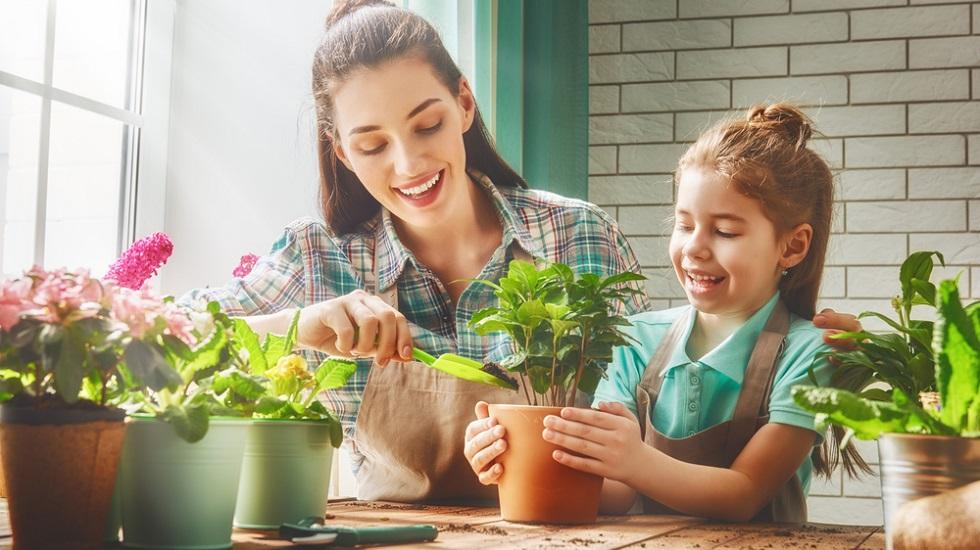 5 schimbări în viața de zi cu zi care te ajută să te bucuri de beneficiile naturii