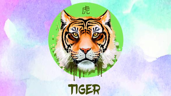 Anul Porcului de Pământ pentru Zodia Tigrului