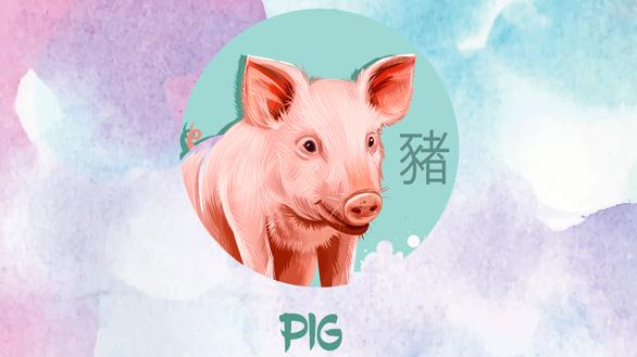Anul Porcului de Pământ pentru Zodia Porcului