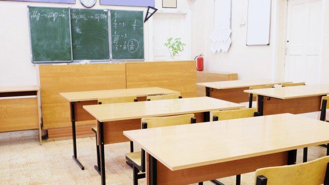 Se inchid scolile din cauza gripei
