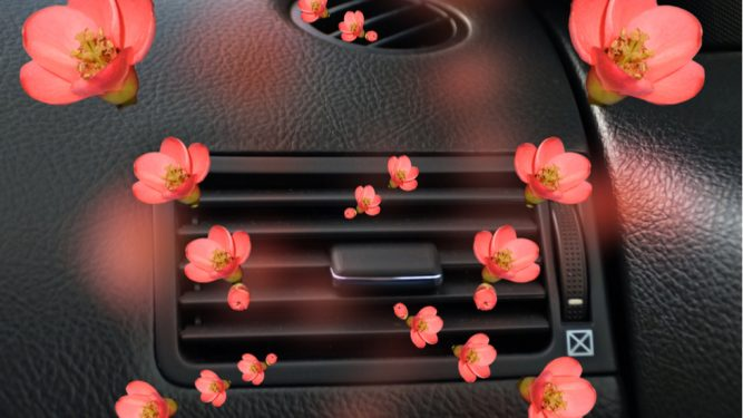 ce odorizant de mașină trebuie să folosim pentru a reduce riscul de accidente