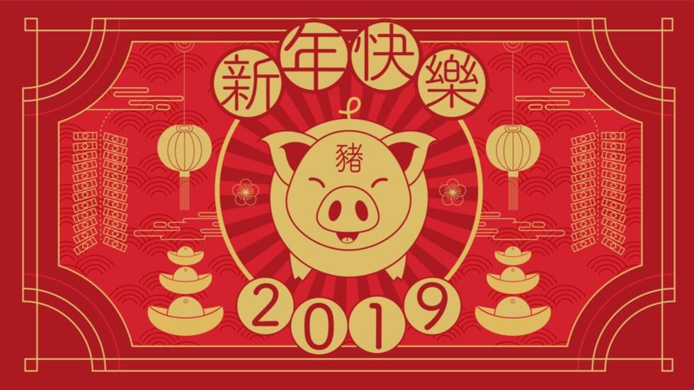 ce aduce nou Anul Porcului de Pământ