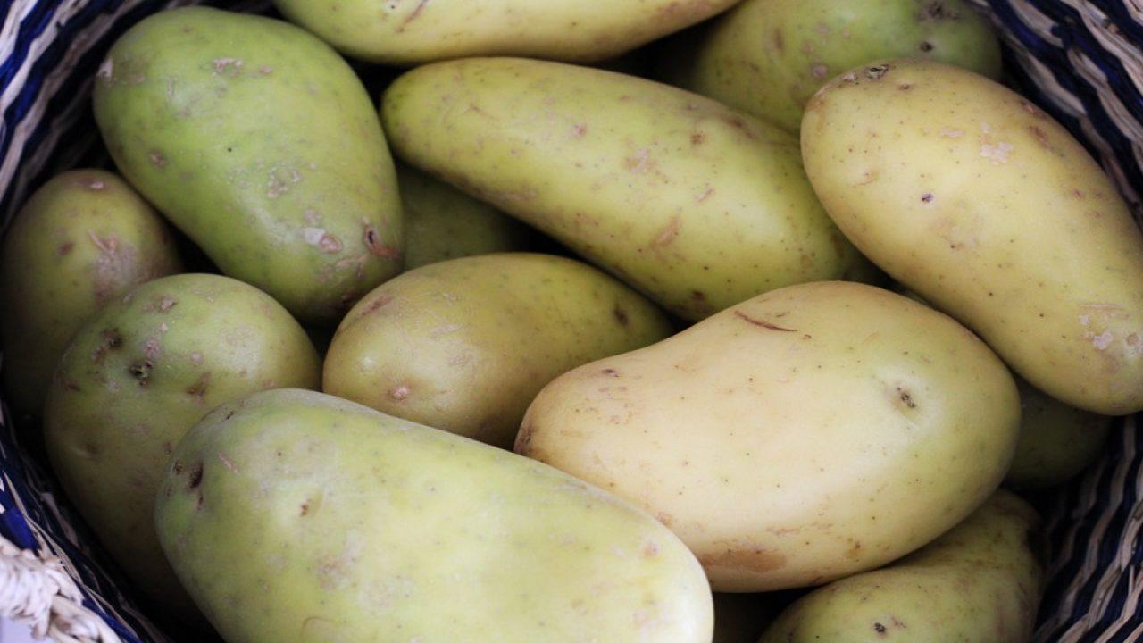 Lumina din cartof