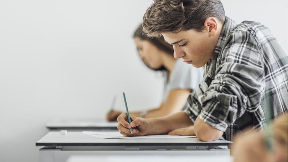 subiecte și bareme de corectare pentru proba la alegere