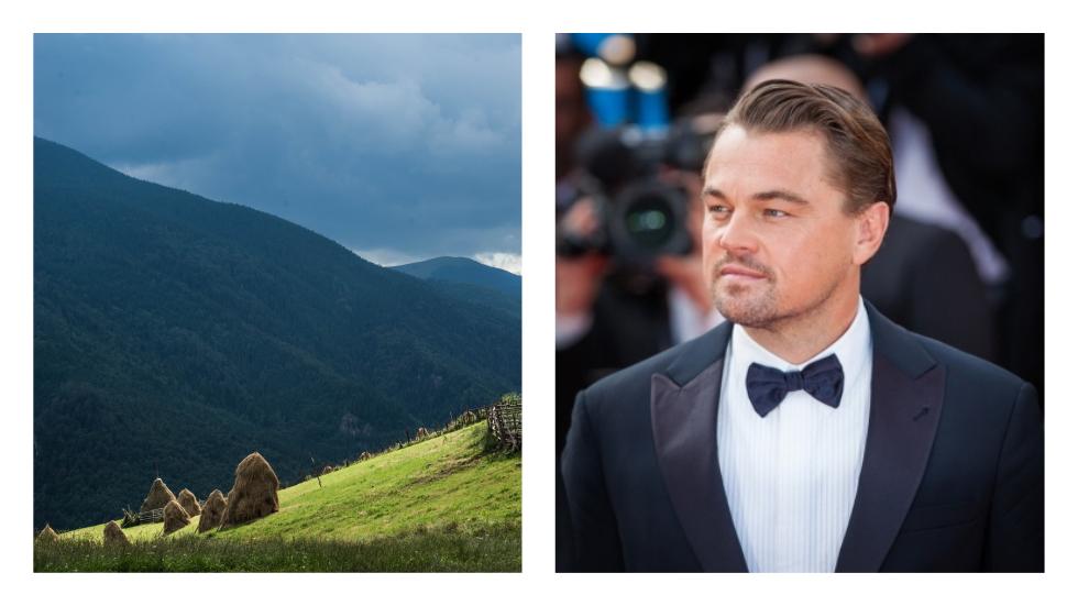 Leonardo di Caprio a pus ochii pe pădurile noastre