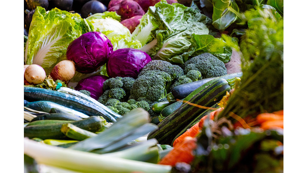 alimente anticancer