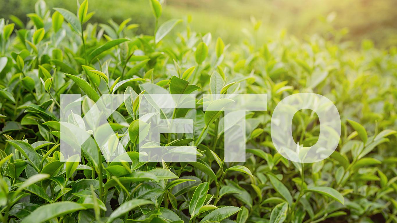 Top 5 cele mai bune ceaiuri pentru sanatate